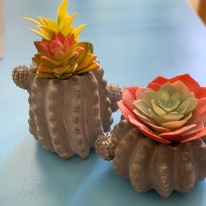 2 fake succulent cactus arrangement